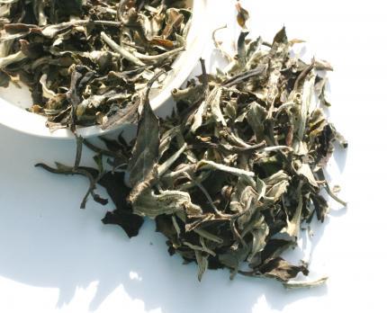 Белый чай Юэ Гуан Бай (Белый лунный свет)